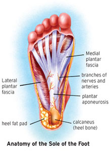 how to help plantar fasciitis