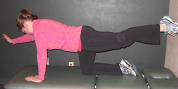 Alternating Opposite Upper and Lower Extremity Lift